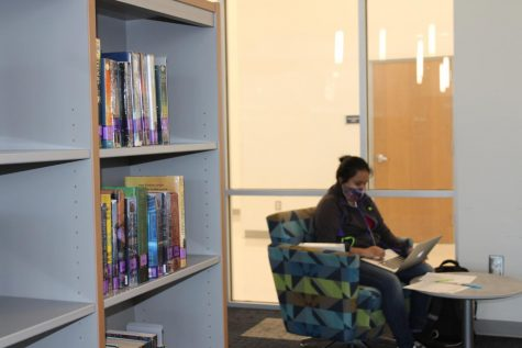 A student quietly studies in the library during lunch.