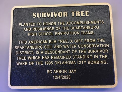 The plaque at the bottom of the newly planted tree details Spartanburg Soil and Water